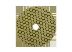 Resin Dry Polishing Pad